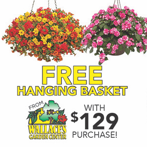 FREE HANGING BASKET, COFFEE, & PANDORA FOR MOM!